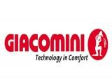 Giacomini коллекторные группы